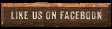 Like Texas Chainsaw Carver | Rob's Creation LLC on Facebook